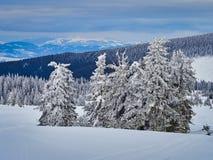 Winter Landscape in Madaras, Harghita, Romania. Winter Landscape in Madaras, Harghita in Romania Stock Photo