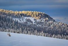 Winter Landscape in Madaras, Harghita, Romania. Winter Landscape in Madaras, Harghita in Romania Stock Photography