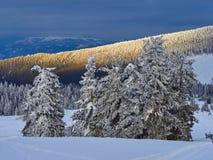 Winter Landscape in Madaras, Harghita, Romania. Winter Landscape in Madaras, Harghita in Romania Stock Image