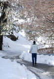 Winter Landscape and man walking. Stock Photos