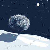 winter landscape in moonlight Stock Photo