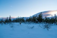 Winter landscape in the morning of a december day. In Hedmark county Norway stock image