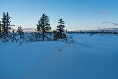 Winter landscape in the morning of a december day. In Hedmark county Norway stock photos