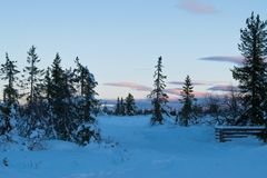 Winter landscape in the morning of a december day. In Hedmark county Norway royalty free stock image