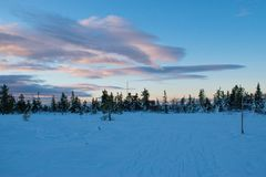 Winter landscape in the morning of a december day. In Hedmark county Norway royalty free stock images