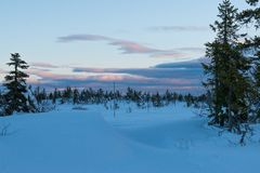Winter landscape in the morning of a december day. In Hedmark county Norway stock photography
