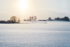 Winter landscape in morning Stock Images