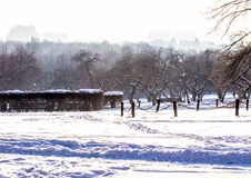 Winter landscape. Moscow park in winter. Stock Images