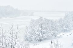 Winter landscape, Moscow Royalty Free Stock Image
