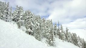 Winter landscape mountain forest snow stock footage