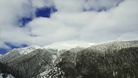 Winter landscape mountain forest snow stock video