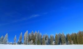 Winter landscape on mountain Royalty Free Stock Photos