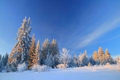 Winter landscape on mountain Royalty Free Stock Photo
