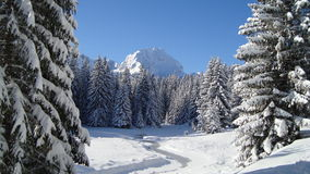 Winter landscape with mountain peak Stock Photos
