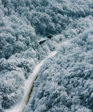 Winter landscape mountain road in forest Royalty Free Stock Image