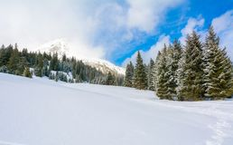 Winter landscape in a mountain valley with snow.  Royalty Free Stock Photo