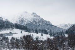 Winter landscape. Mountain village in the Bran,Romanian Carpathians Stock Image