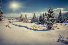 Winter landscape in the mountain village Royalty Free Stock Image