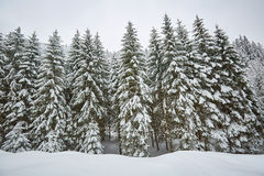 Winter landscape in the mountains Stock Photos