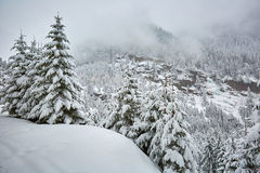 Winter landscape in the mountains Stock Photo