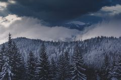 Winter Landscape in mountains. High mountains in clouds. Dramatic sky. View of snow-covered forest. stock photo
