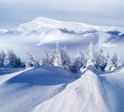 Winter landscape in mountains Royalty Free Stock Photo