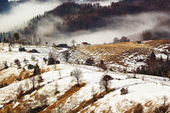 Winter Landscape. In the mountains, near Brasov, Transilvania Royalty Free Stock Image