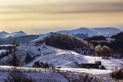 Winter Landscape. In the mountains, near Brasov, Transilvania Stock Image
