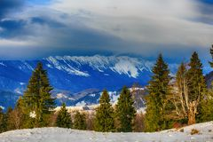 winter landscape in Mountains Romania Stock Image