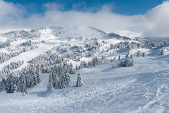 Winter landscape in mountains with snow and snow covered trees stock photo