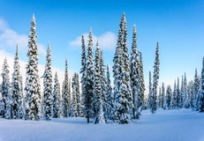 Winter landscape in the mountains under beautiful skies Royalty Free Stock Photos
