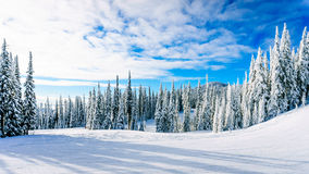 Winter landscape in the mountains under beautiful skies Stock Image