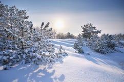 Winter landscape nature. stock photos