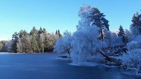 Winter landscape nature stock image