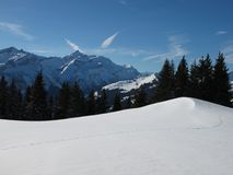 Winter Landscape Near Gstaad Royalty Free Stock Images