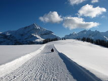 Winter landscape near Gstaad Royalty Free Stock Image