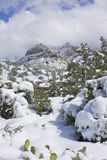 Winter landscape near Sedona Stock Photography