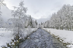 Winter landscape near small river. White forest with snow Royalty Free Stock Images