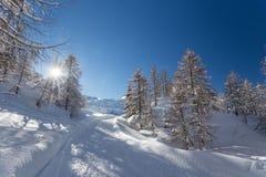 Winter landscape near Vogel ski center in mountains Julian Alps Royalty Free Stock Image