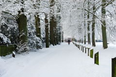 Winter landscape in the Netherlands Royalty Free Stock Photography