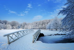 Winter landscape in the Netherlands. Beautiful winter landscape in the Netherlands ( Elswout Overveen royalty free stock photo