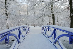 Winter landscape in the Netherlands. Beautiful winter landscape in the Netherlands ( Elswout Overveen royalty free stock images