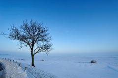 Winter landscape in the Netherlands Royalty Free Stock Images