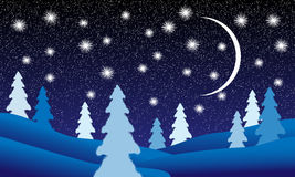 Winter landscape at night Royalty Free Stock Photo