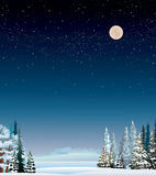 Winter landscape. Winter night landscape with snow covered trees and starry sky Royalty Free Stock Image