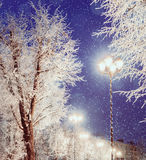 Winter landscape night view of shining lantern among the winter frosty trees and falling winter snow Stock Photo