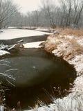 Winter Landscape Northern Illinois royalty free stock photo