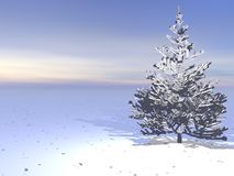 Winter landscape in northwest Royalty Free Stock Photography