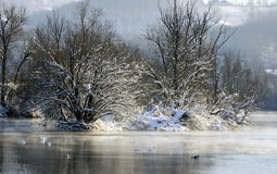 Winter landscape over the river Royalty Free Stock Photo