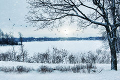 Winter landscape overlooking a lake Royalty Free Stock Photo